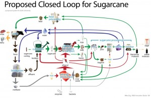 The proposed closed loop system for sugarcane harvesting, utilizing waste products from the sugarcane plant to produce ethanol.