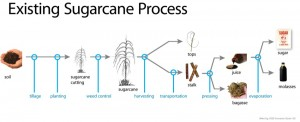 The process required to produce sugar from cane.